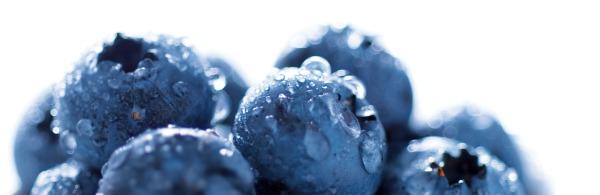 Glasnische-Motiv-Blueberry-ohne-Logo