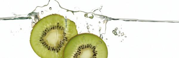Glasnische-Motiv-Kiwi-ohne-Logo